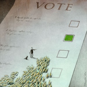 Pawel Kuczynski-voting